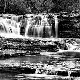 Treman Cascades #3 by Stephen Stookey