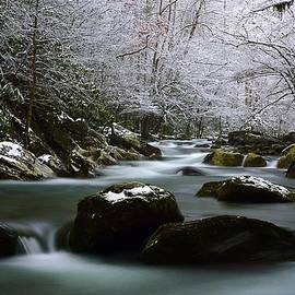 Joel E Blyler - Tremont Treasure Great Smoky Mountains National Park