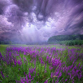 Trials And Tribulations by Phil Koch