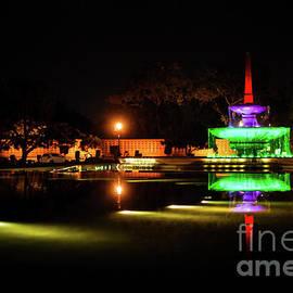 Neha Gupta - Tricolor Fountain III