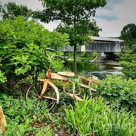 Steve Brown - Tricycle and the Covered Bridge