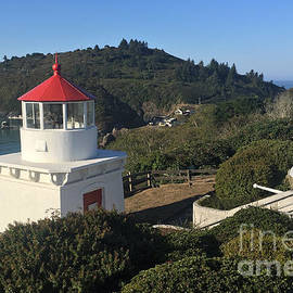 Trinidad Head Memorial Lighthouse, California Lighthouse by California Views Archives Mr Pat Hathaway Archives