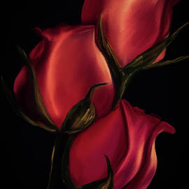 Trio of Red Roses by Michele Koutris
