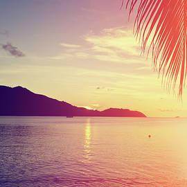 NadyaEugene Photography - Tropical Beach At Sunset