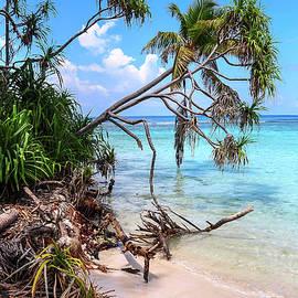 Jenny Rainbow - Tropical Beach