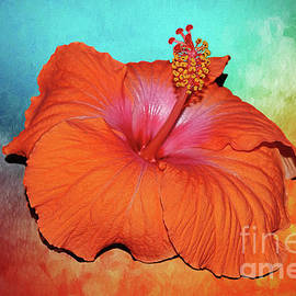 Tropical Delight by Kaye Menner by Kaye Menner