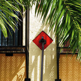 Carol Lloyd - Tropical Detail