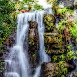 Gene Healy - Tropical Falls