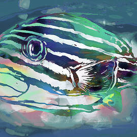 Tropical Fish - New Pop Art Poster - Kim Wang