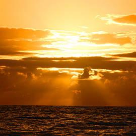 Michael Rucker - Tropical Hawaiian Sunset