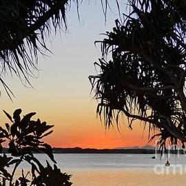 Tropical Horizon by Trudee Hunter
