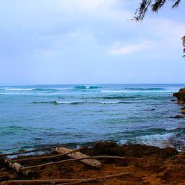 Michael Rucker - Tropical Island of Oahu