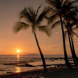 Kristina Rinell - Tropical Sunset 0701