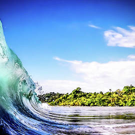 Tropical Wave by Nicklas Gustafsson