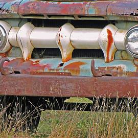 Truck In The Grass  by Lynda Lehmann