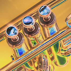 Trumpet Keys by Pamela Williams