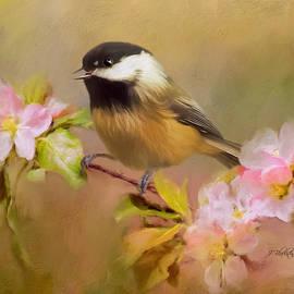 Jordan Blackstone - Trust - Songbird Art