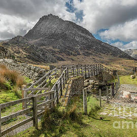 Adrian Evans - Tryfan and the Ogwen Valley