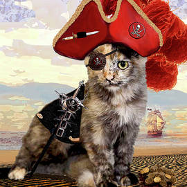 Teuti the Pirate - Cats In Hats Series by Michele Avanti