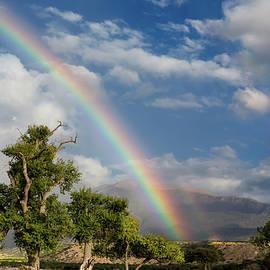 Kathleen Bishop - Tularosa Rainbow