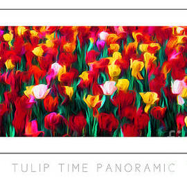 Mike Nellums - Tulip Time Panoramic poster
