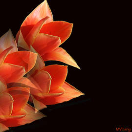 Femina Photo Art By Maggie - Tulips Dramatic Orange Montage