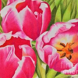 Sharon Patterson - Tulips
