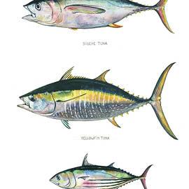 Juan Bosco - Tuna fishes
