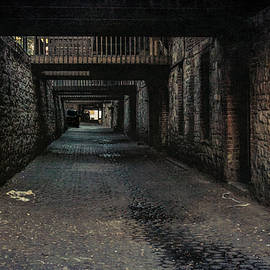 Tunnels of Savannah by Andrew Wilson