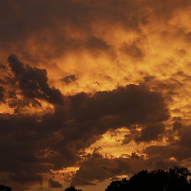 Jeff Roney - Turbulent Sky