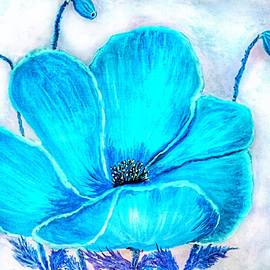 Turquoise Poppy by Anne Sands