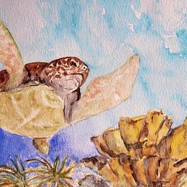 Patricia Beebe - Turtle Soar
