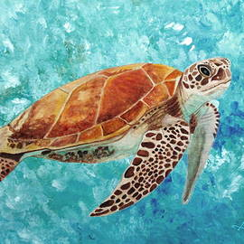 Turtle Swimming by Angeles M Pomata