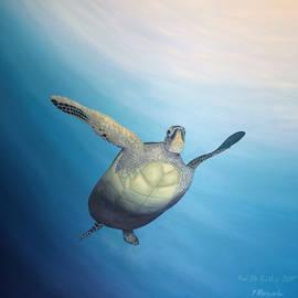 Torrence Ramsundar - Turtle
