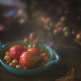 Tutti Frutti by Rosemary Smith