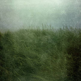 Olivia StClaire - Twilight Beach