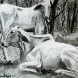 Two Cows Resting by Jordan Henderson