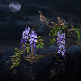 Spadecaller - Mourning Doves in Moonlight