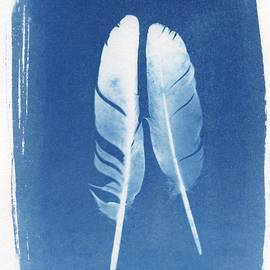 Jane Linders - Two Feathers cyanotype sun print alternative process photography