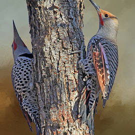 Two Flickers by Donna Kennedy