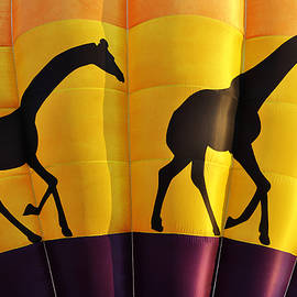 Two Giraffes Riding On A Hot Air Balloon by Luke Moore