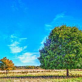Roger Passman - Two Trees on the Illinois Prairie