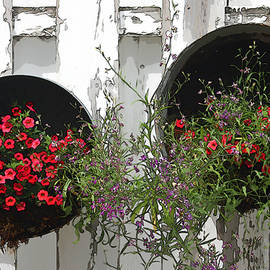 Sandra Foster - Two Tub Planters Displayed On Fence - Digital Artwork