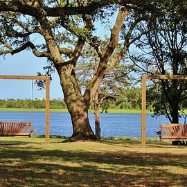 Two Wooden Swings