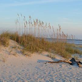 Linda Covino - Tybee beach