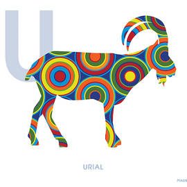 U is for Urial - Ron Magnes