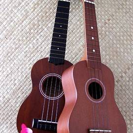 Ukulele Duet by Mary Deal