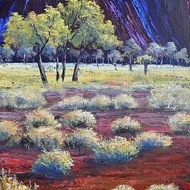 Christopher Vidal - Uluru After the rain
