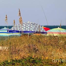 Diann Fisher - Umbrella Beauty At The Beach