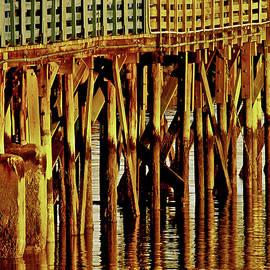 Carol F Austin - Under The Boardwalk wall art print
